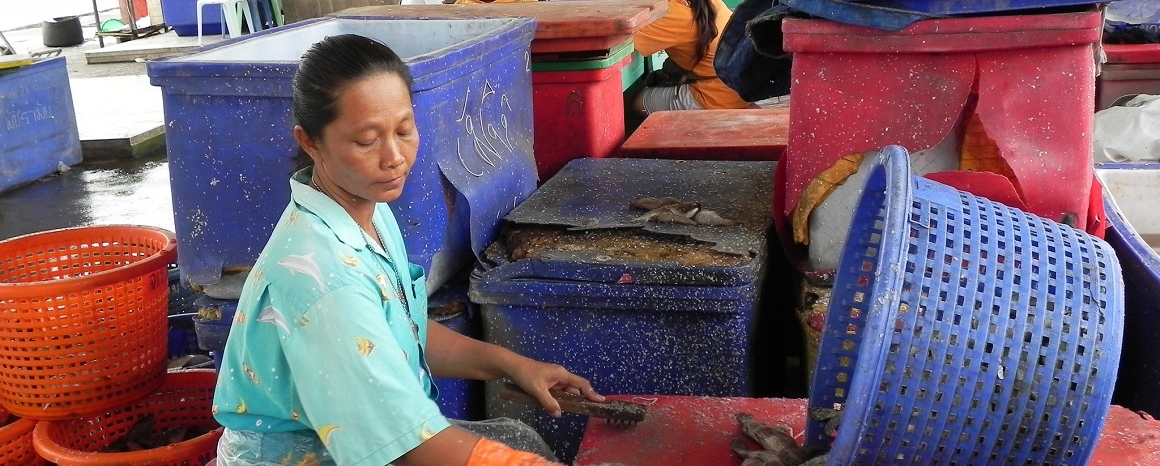 Thailand's seafood industry | Ethical Trading Initiative